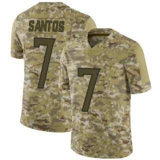 Cairo Santos Men's Tennessee Titans Nike 2018 Salute to Service Jersey - Limited Camo